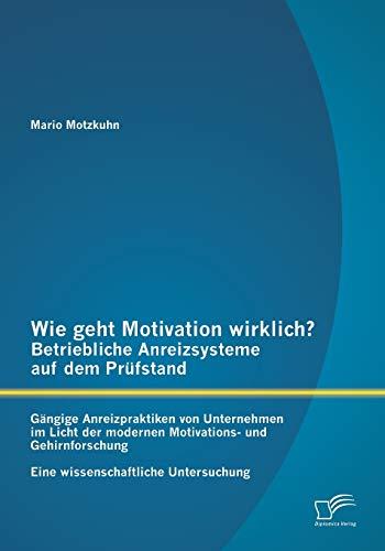 Wie geht Motivation wirklich? – Betriebliche Anreizsysteme auf dem Prüfstand: Gängige...